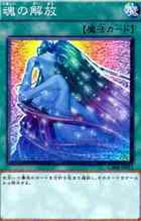 魂の解放 N [GS04-JP011]