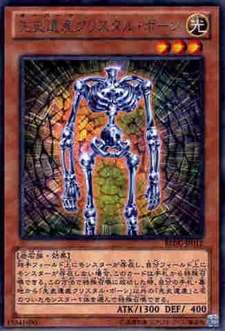 先史遺産クリスタル・ボーン R [REDU]