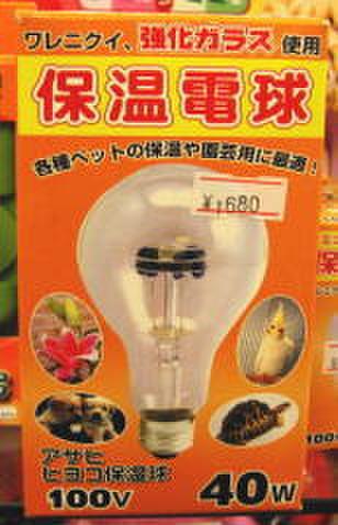 アサヒ 保温電球 40W --