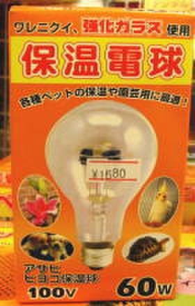 アサヒ 保温電球 60W --