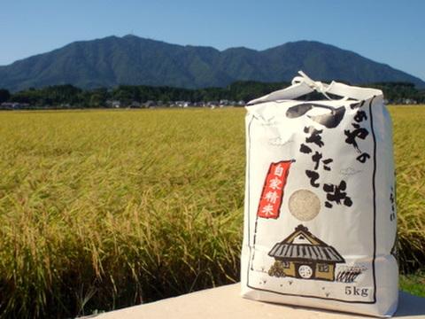 【2019年産】石井農園コシヒカリ 白米5kg