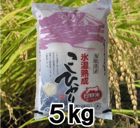 29年産日野郡産氷温熟成こしひかり5㎏(5㎏×1袋)