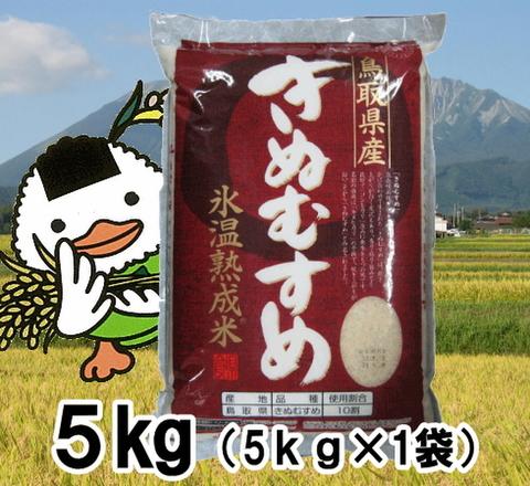 30年鳥取県産氷温熟成きぬむすめ5kg