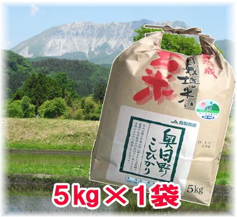 【玄米】29年産氷温熟成特別栽培米奥日野こしひかり5㎏(5kg×1袋)