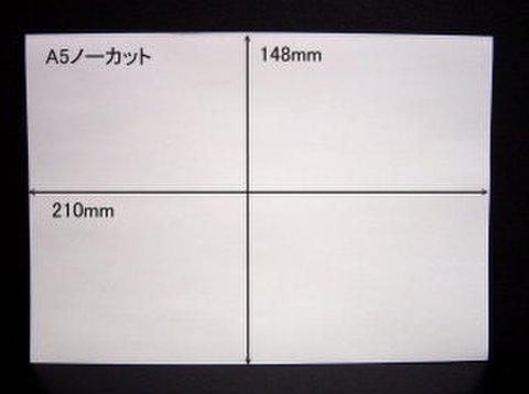 ノーカットタックシールA5サイズ 10枚パック【送料無料】