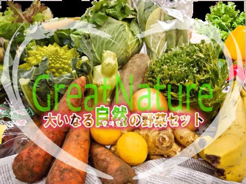大いなる自然野菜セット Bコース