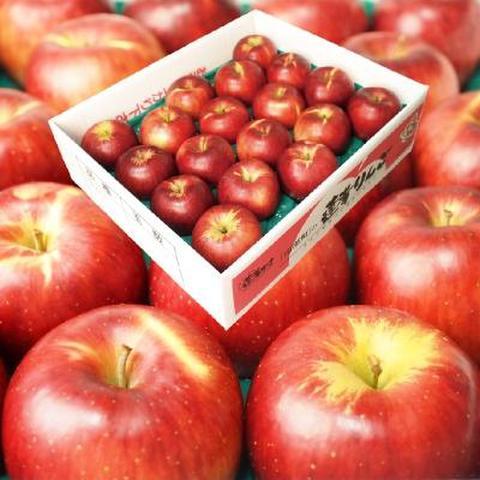 【わけあり】 りんご 5kg