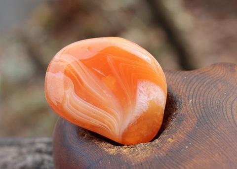 セール特価! 鮮やかオレンジ! ボツワナ カーネリアン 大粒タンブル