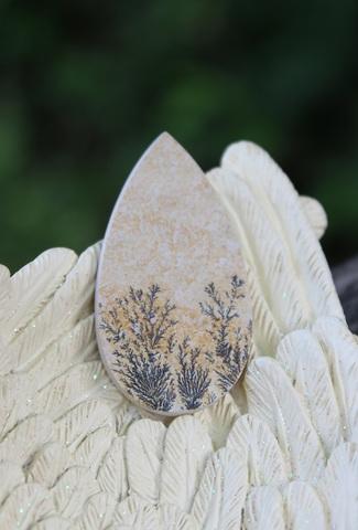 セール特価! 珍品 枯れない植物 デンドライトジャスパー タンブル