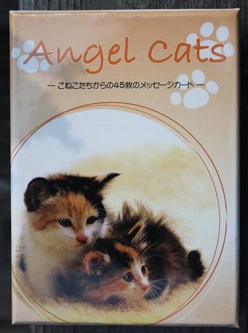 Angel Cats ~こねこたちからの45枚のメッセージ~