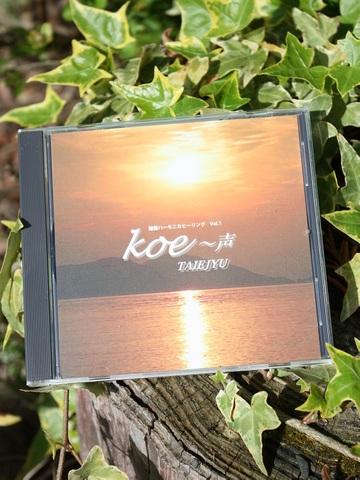 Koe~声 TAIEJYU (タイジュ) 鍵盤ハーモニカヒーリングVol.1