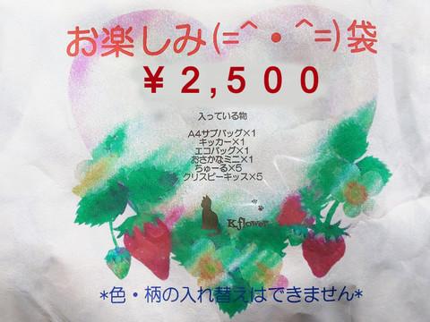おたのしみ袋【送料無料】