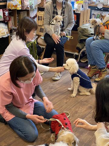 【変更】3月10日(水)シニア犬パーティ