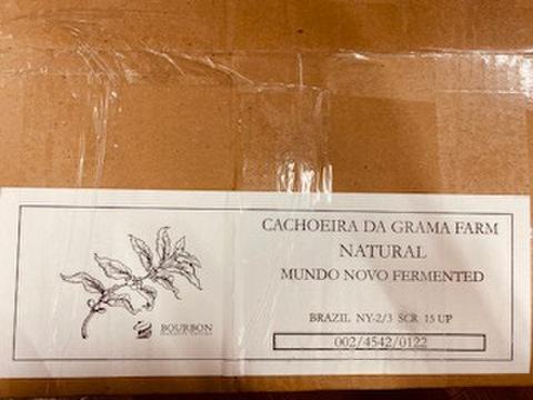 生豆 ブラジル カショエイラ ダ・グラマ・アナエロビック  1kg
