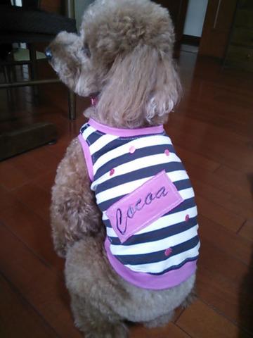 ピンク水玉ストライプ お名前刺繍