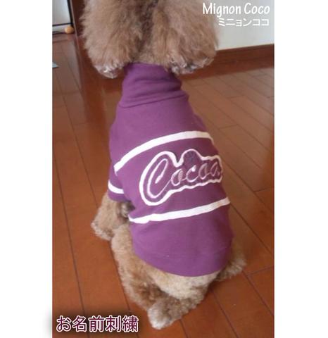 パープル ハイネック Tシャツ わんちゃん服  XS S Ⅿ L犬服 お名前刺繍 刺繍