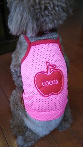 ピンクメッシュランニングリンゴ お名前刺繍