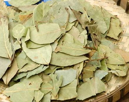 香叶-ローリエ(月桂樹の葉)香辛料 10g