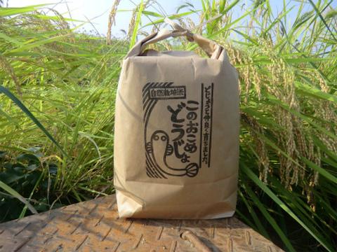 〈新米予約〉10%増量!! 無肥料無農薬 自然栽培米コシヒカリ このおこめどうじょ 白米10キロ