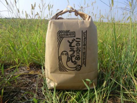 〈新米予約〉10%増量!! 無肥料無農薬 自然栽培コシヒカリ このおこめどうじょ 玄米5キロ