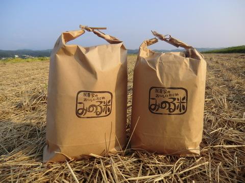 みのる米 玄米5キロ
