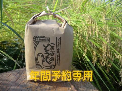 ◆年間予約のお客様専用◆ 自然栽培コシヒカリ このおこめどうじょ 玄米10キロ
