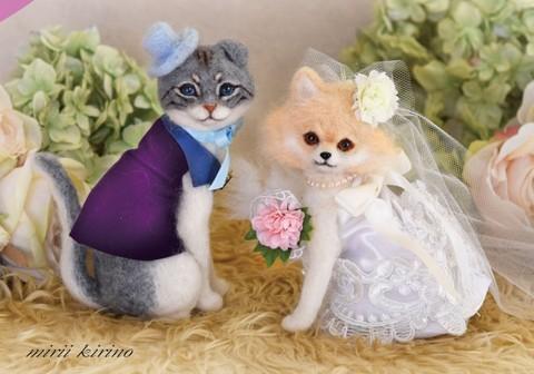『ブライダル犬猫』