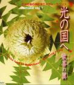 【光の国へ remake vol.1   歓喜の翼】CD