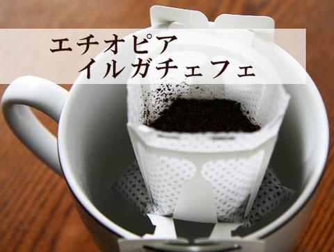ノベルティ用珈琲 エチオピア イルガチェフェ 10袋