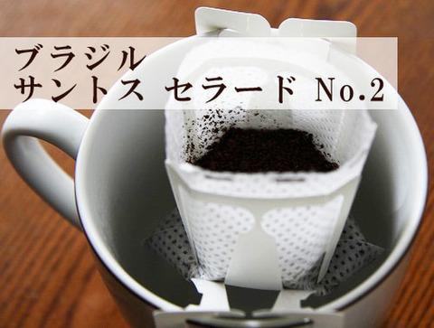 ノベルティ用珈琲 ブラジル サントス セラード 10袋