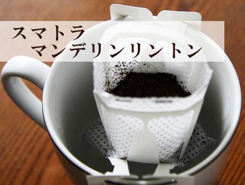 ノベルティ用珈琲 スマトラ マンデリン 10袋