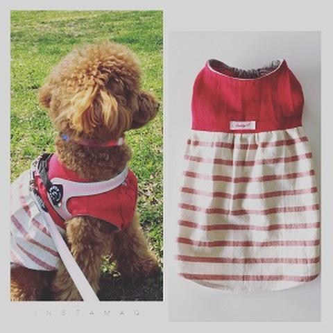 犬服型紙 赤とボーダーのワンピース dog-6