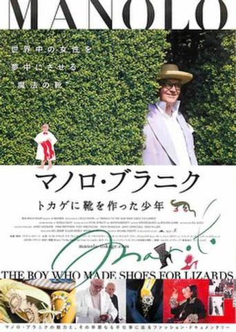 映画チラシ: マノロ・ブラニク トカゲに靴を作った少年(英題黒)