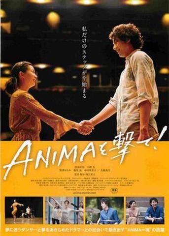 映画チラシ: ANIMAを撃て!