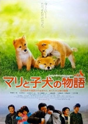 映画ポスター0224: マリと子犬の物語