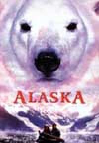 タイチラシ0303: アラスカ 小さな冒険者たち