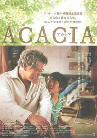 映画チラシ: アカシア