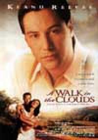 タイチラシ0872: 雲の中で散歩
