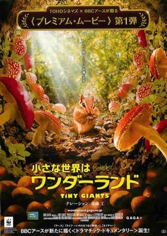 映画チラシ: 小さな世界はワンダーランド