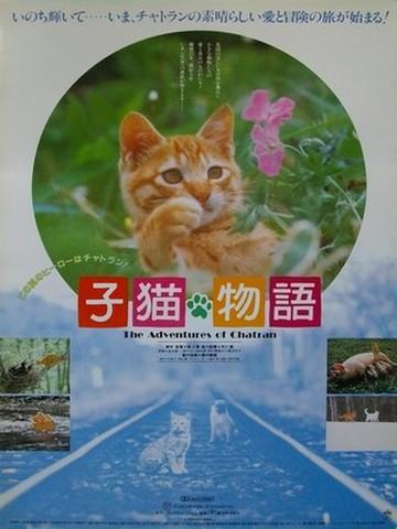 映画ポスター1436: 子猫物語