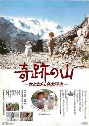 映画チラシ: 奇跡の山 さよなら、名犬平治