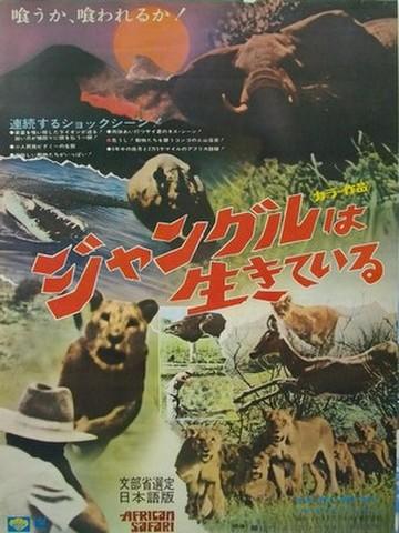 映画ポスター1435: ジャングルは生きている