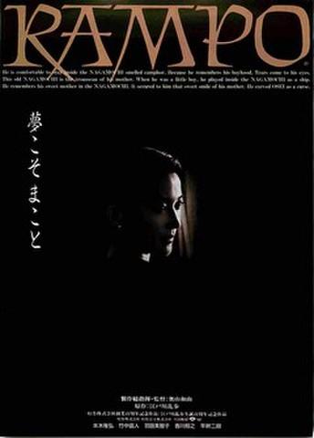 映画チラシ: RAMPO(製作総指揮・監督:奥山和由)