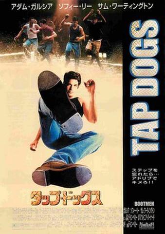 映画チラシ: タップ・ドッグス