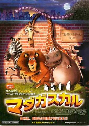 映画チラシ: マダガスカル(動物園から逃げ出して~)