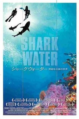 シャークウォーター 神秘なる海の世界(試写状・宛名記入済)