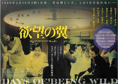 映画チラシ: 欲望の翼 デジタルリマスター版(ウォン・カーウァイ特集)