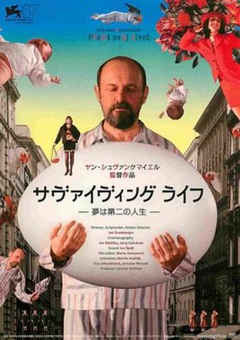 映画チラシ: サヴァイヴィング・ライフ 夢は第二の人生