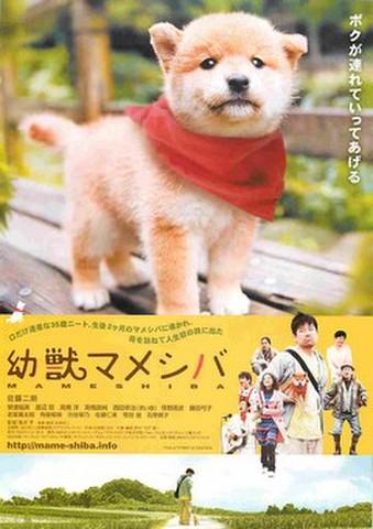 映画チラシ: 幼獣マメシバ