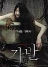 韓国チラシ284: かつら